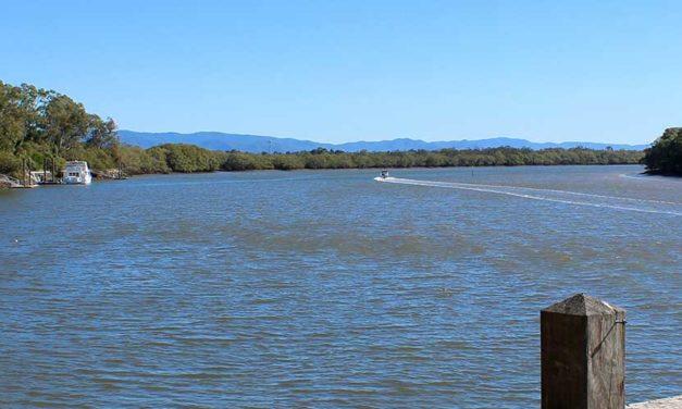 Tinchi Tamba Wetlands Reserve